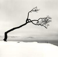 「マイケル・ケンナの北海道」から